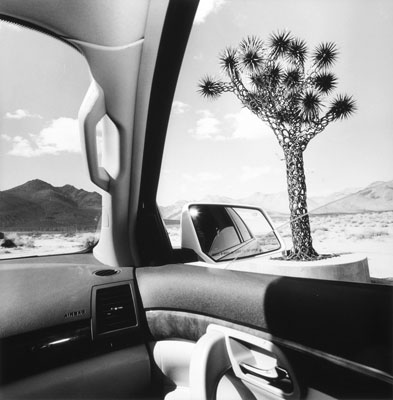 003_lee-friedlander_theredlist